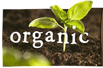 organic_header_title